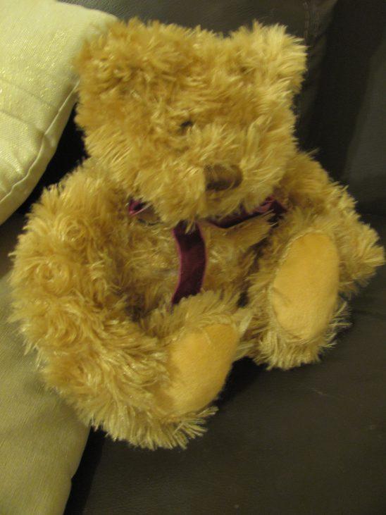 Elinens – Aroma Home Cosy Bear – Sleep Aid