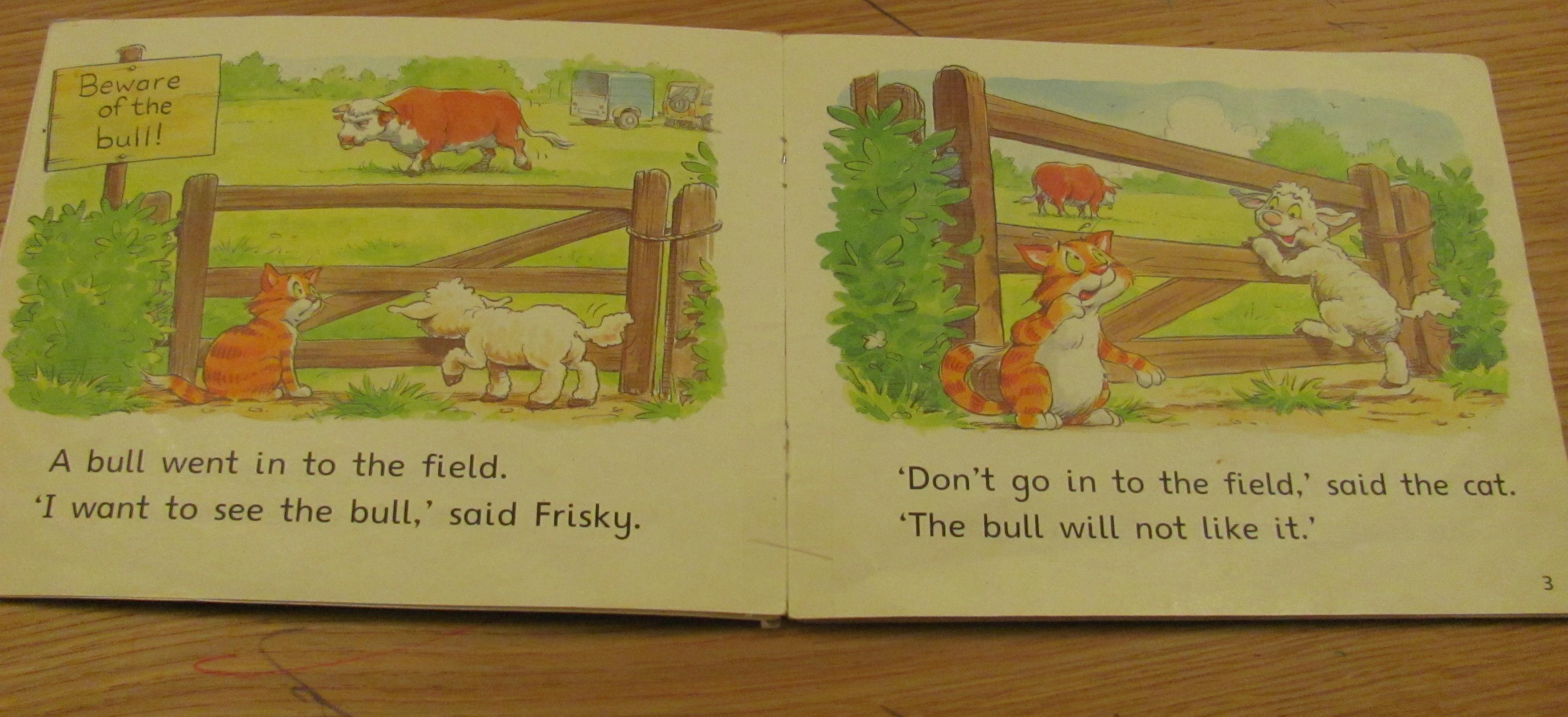 school basic reading scheme books