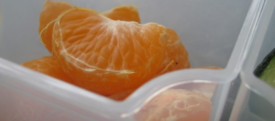 satsuma in bento box