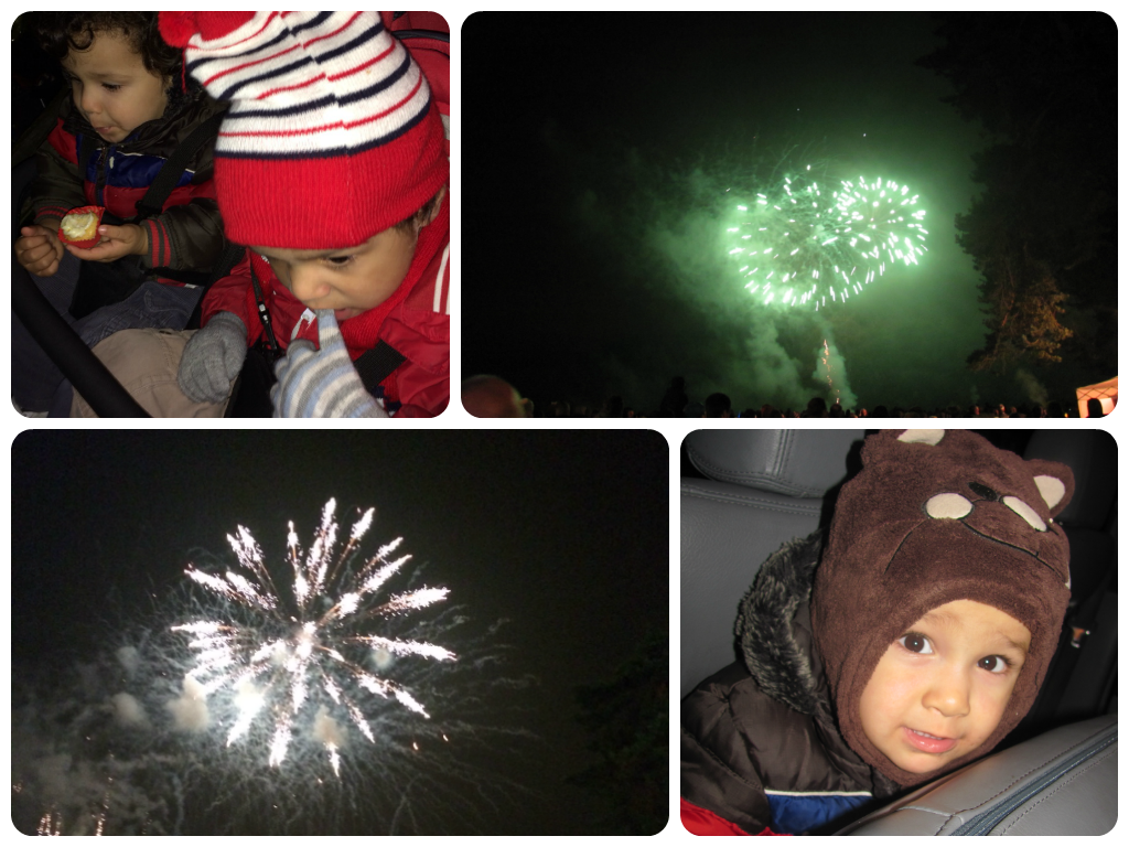 bonfirenight