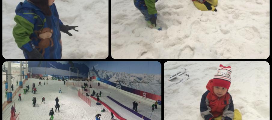 snowcentrecollage