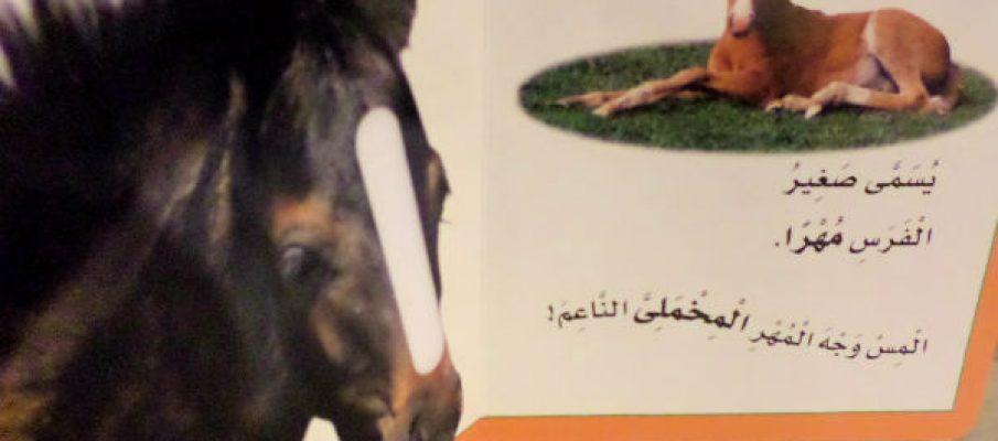 arabicbooks5