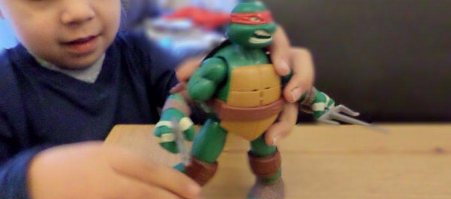 turtlefocus3