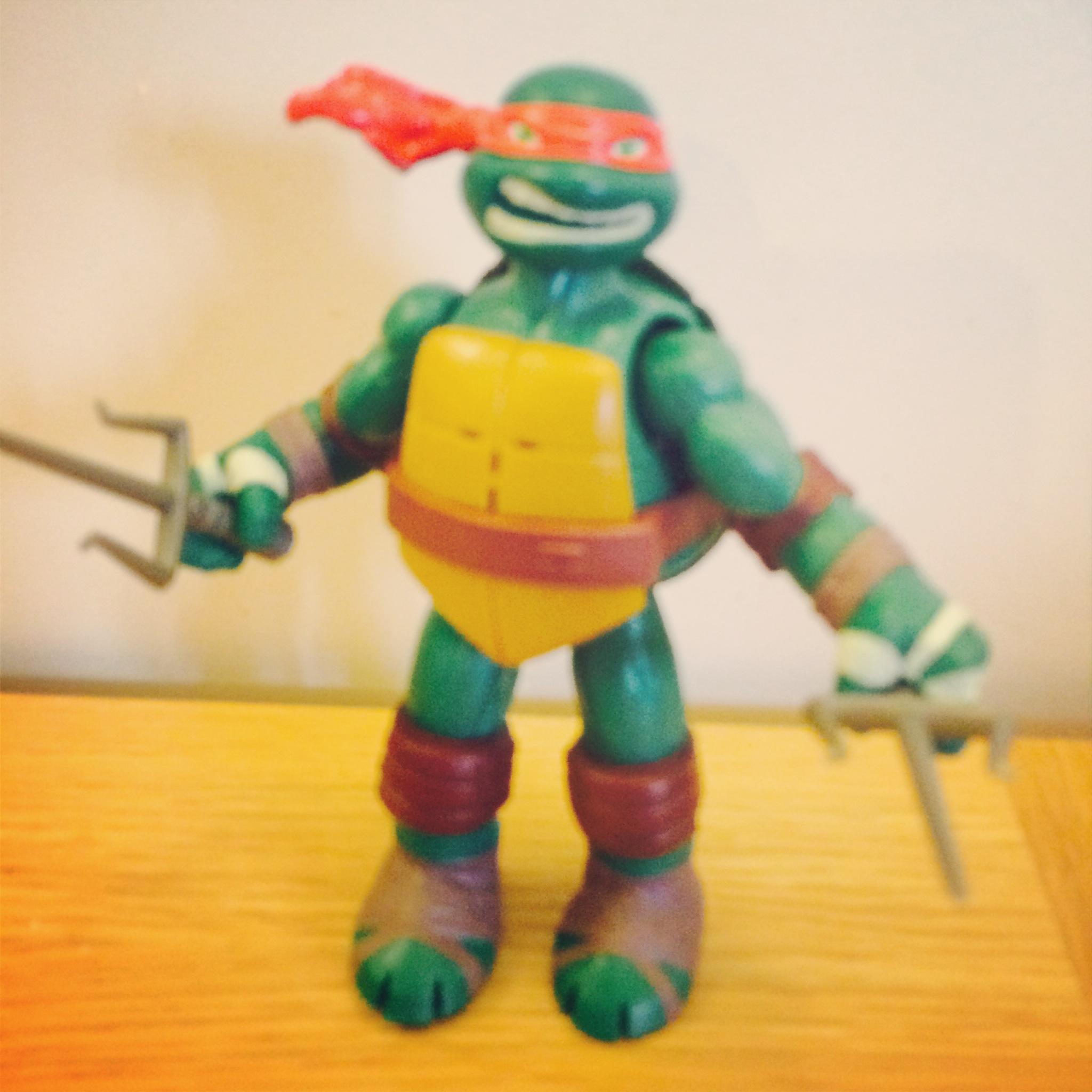 turtletoy6