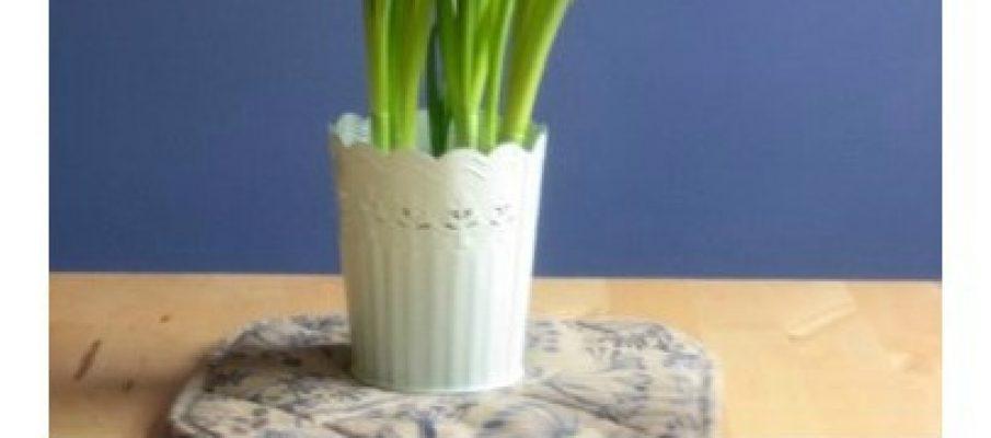 spring-craft-daffodil-craft