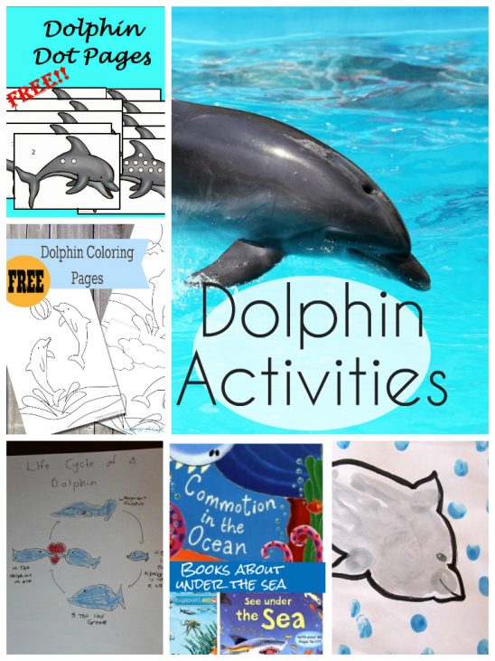 Dolphin Activities for Kids