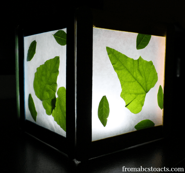 Finished-Nature-Night-Light