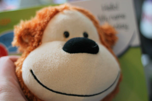 monkeyhosp3