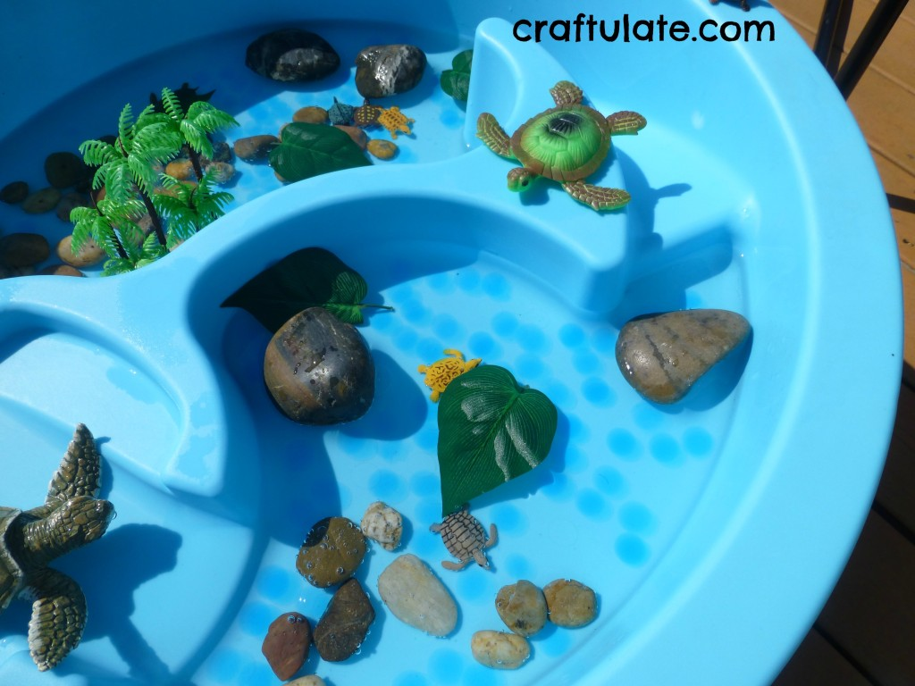turtlewater