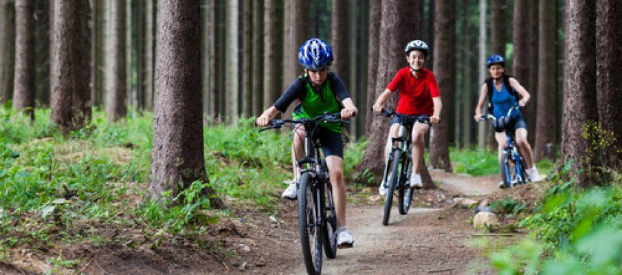 Family mountain biking routes