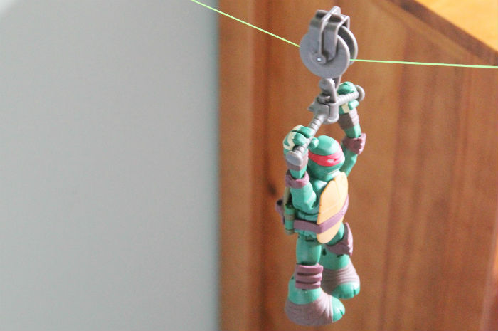 turtleszip11