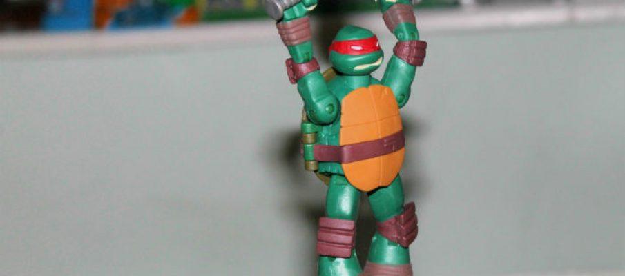 turtlezip12