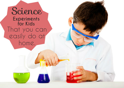 Natural Selection Experiments For Kids