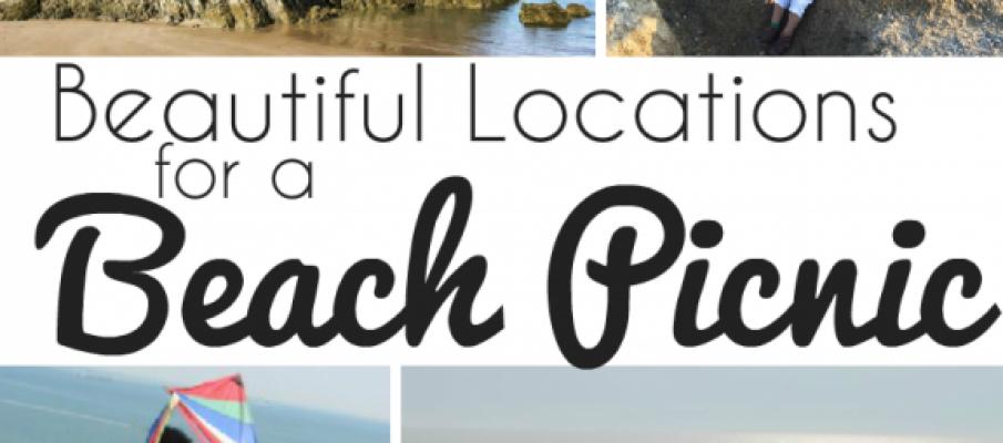 beachpicnicpin