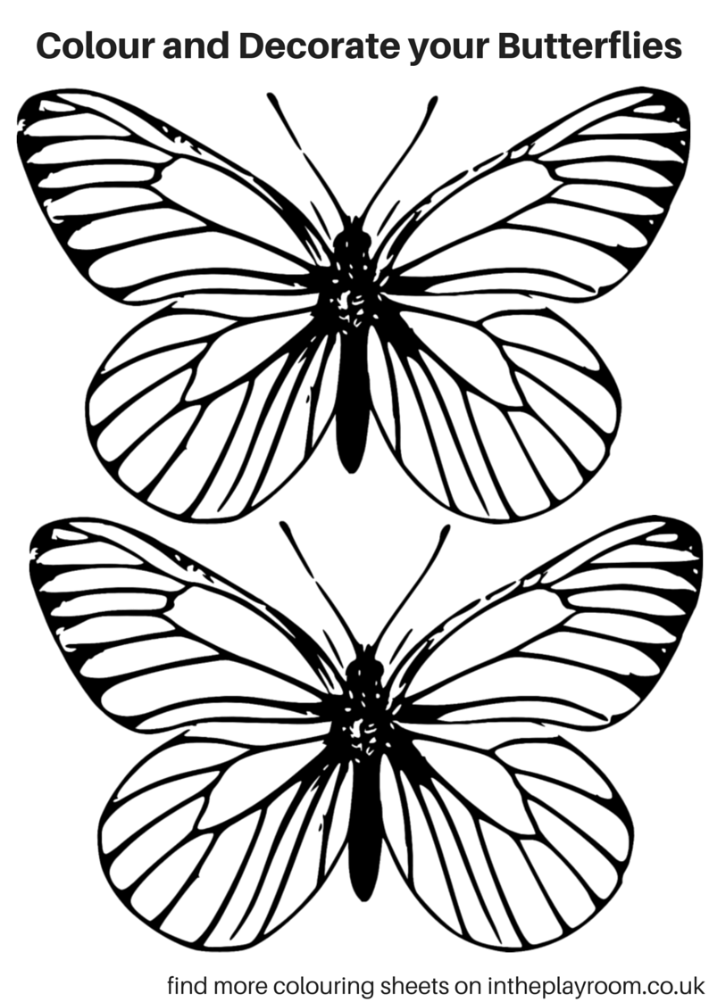 Free Printable Butterfly Colouring