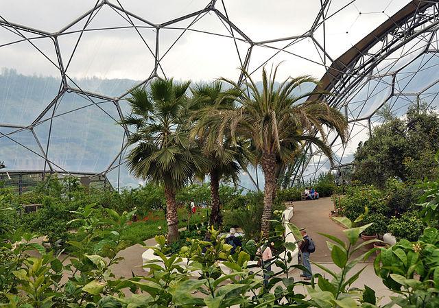 640px-Interior_of_Mediterranean_biome,_Eden_Project