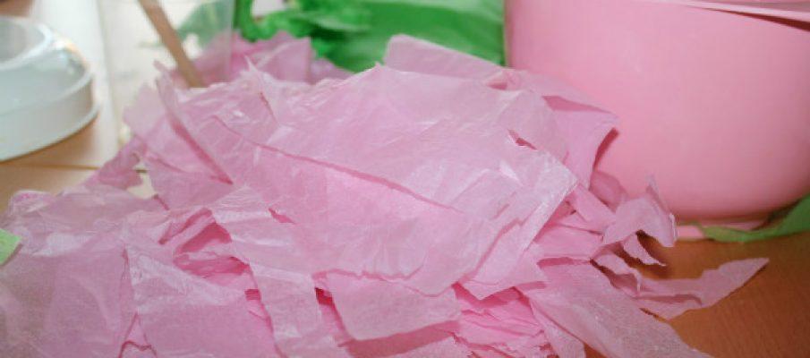 tissuemacheegg1