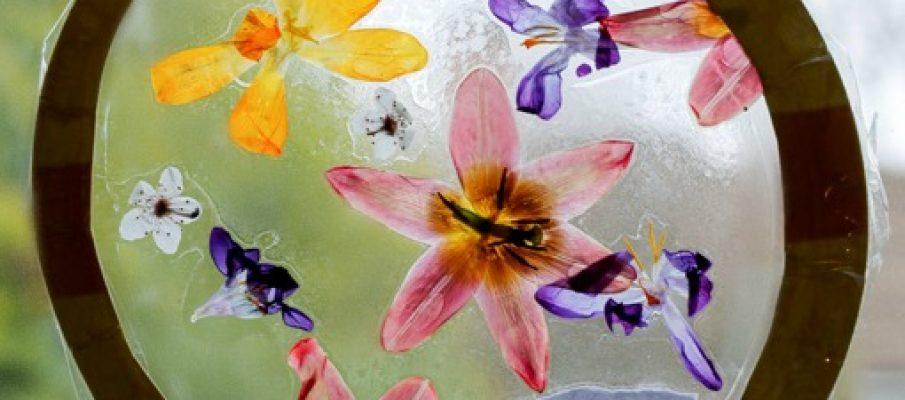 flowersuncatcherSQ