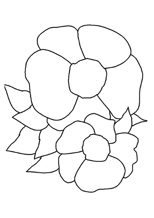 the-cherokee-rose-a4