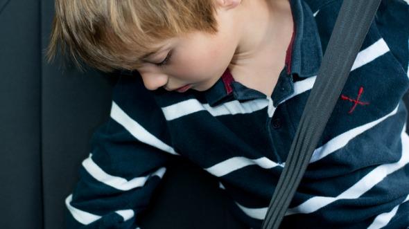 seatbeltcrop