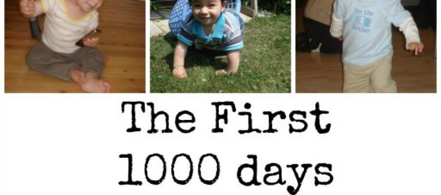 1000days