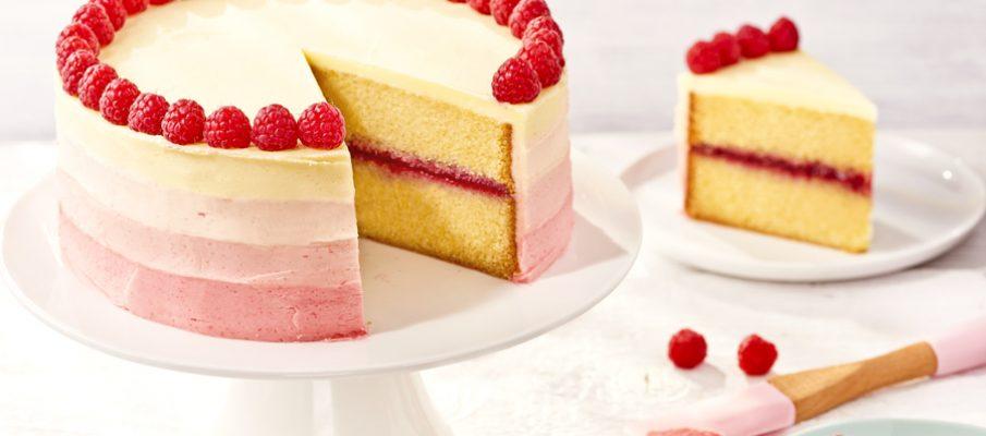 Raspberry ombre cake_landscape_2