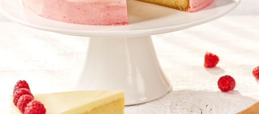Raspberry ombre cake_portrait_1