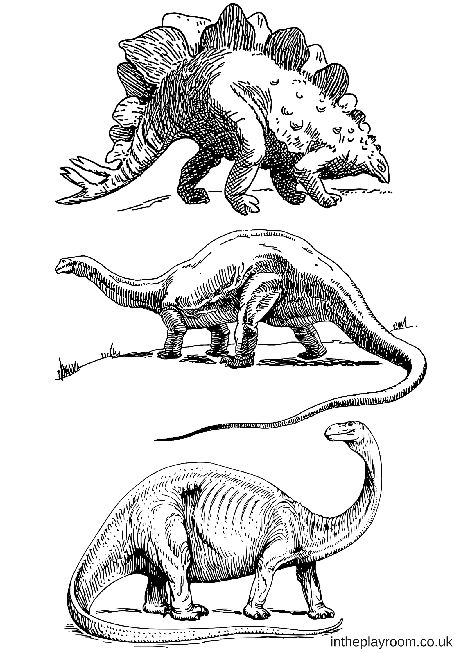 dinosaur facts and coloring pages - photo#38