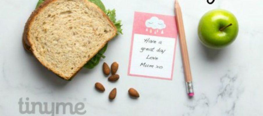 lunchbox-longpin-text