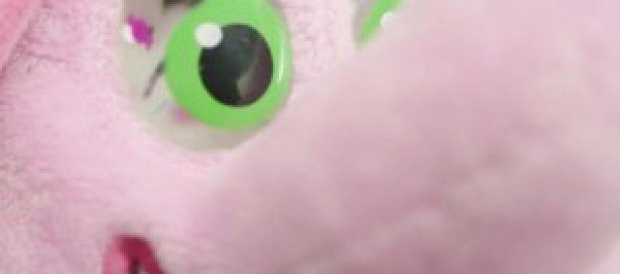 candy-eye