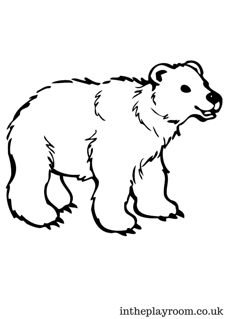 arctic animals colouring pages in the playroom. Black Bedroom Furniture Sets. Home Design Ideas