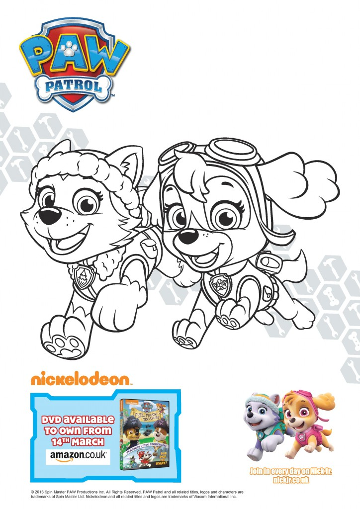 Paw Patrol Pups And The Pirate Treasure Colouring Page