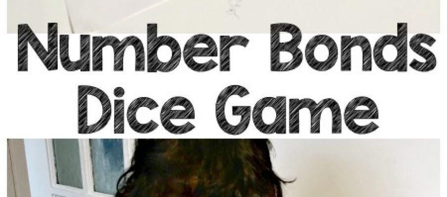 number-bond-dice-pin-text