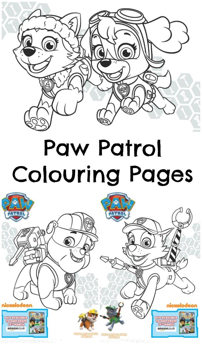 paw-patrol-colouring-pin
