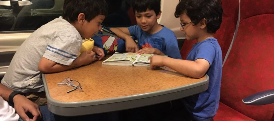 trainpic8-books