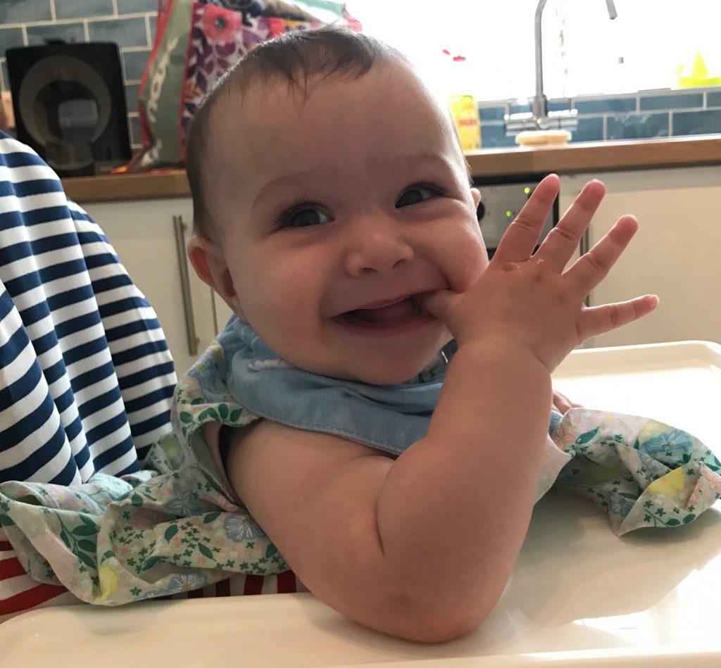 Babease Baby Plan Baby Food