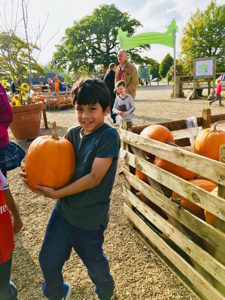 Our Bing Pumpkin this Halloween