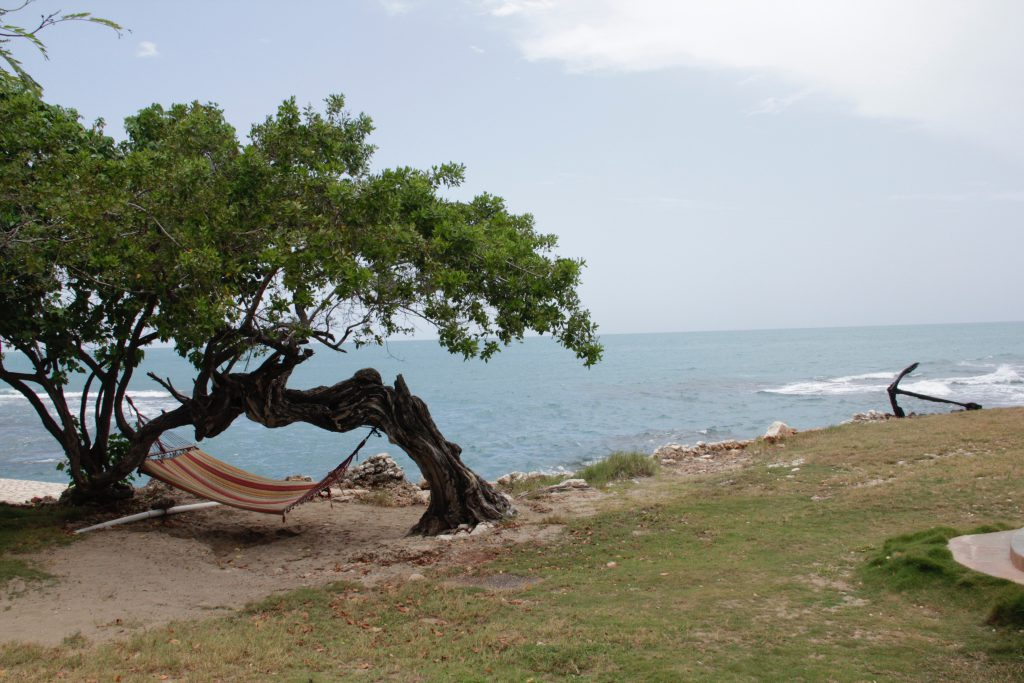 10 Things to do with Kids in Jamaica
