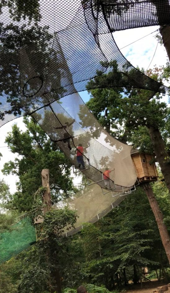 Our Go Ape Adventure with Yazoo