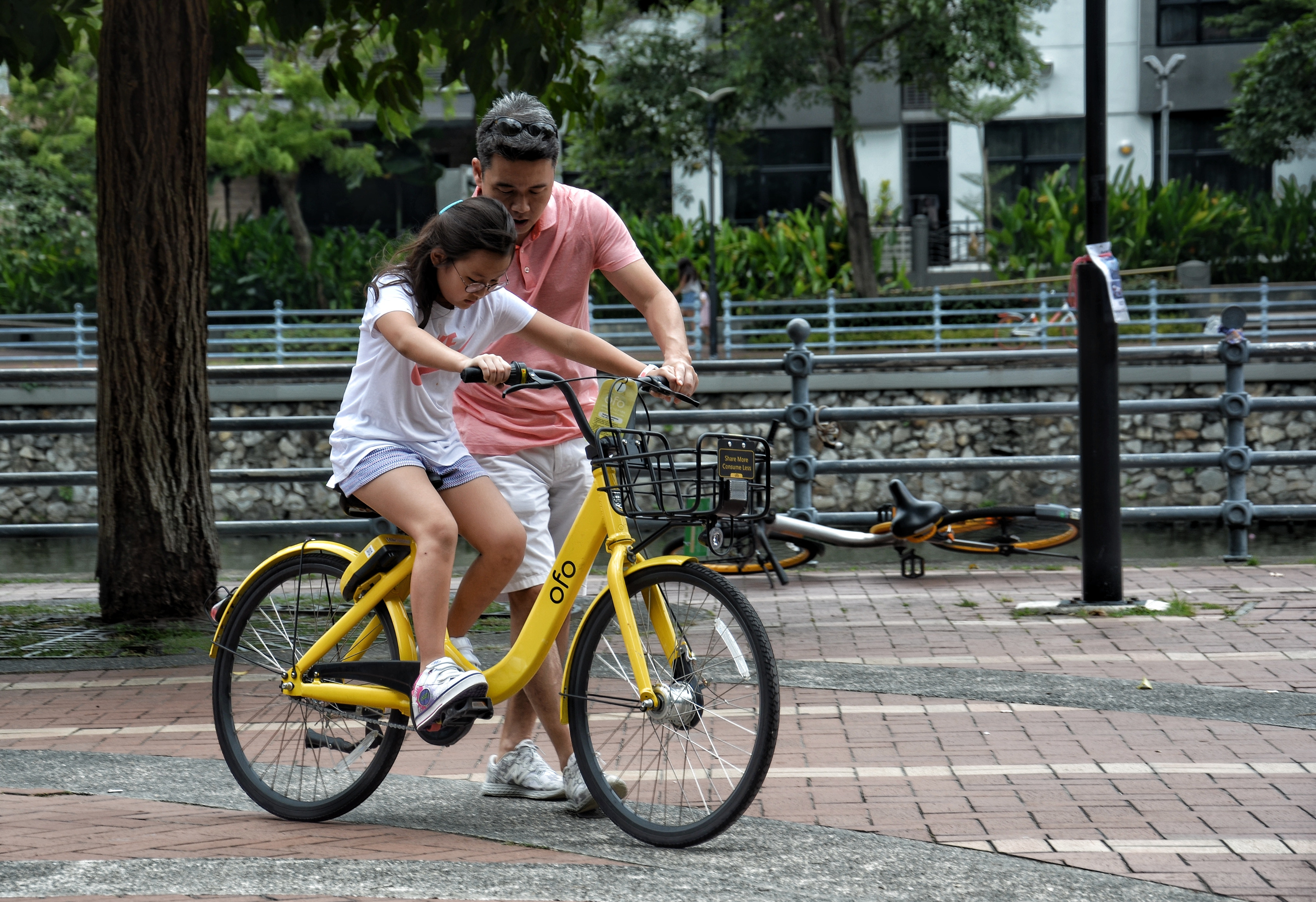 active-adult-bicycle-1005803
