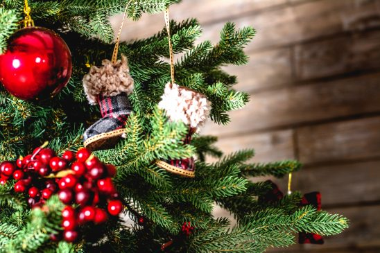 What are the Best Ways to Dispose of Your Christmas Tree?