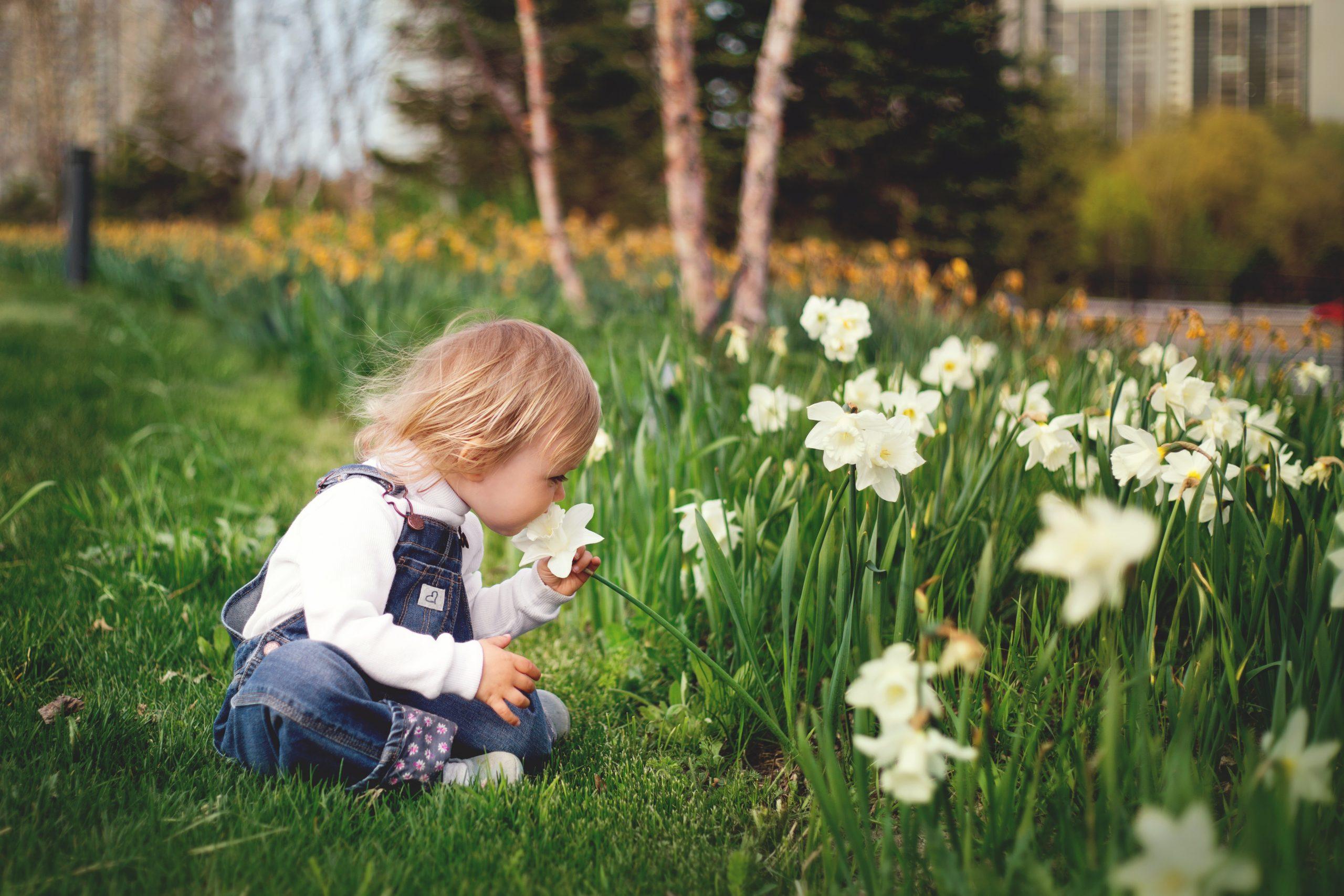 girl-sitting-on-grass-smelling-white-petaled-flower-1879288